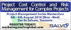 Project Cost Control and Risk Management for Complex Projects