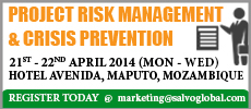 Project Risk Management and Crisis Prevention
