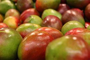 SA to export pigeon peas, pork, mango to India