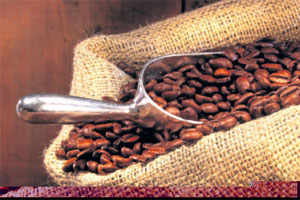 Danish firm plans Kenya coffee roasting factory