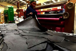 US$164m leather park in Kenya to be constructed