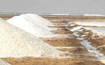 Tanzania Salt